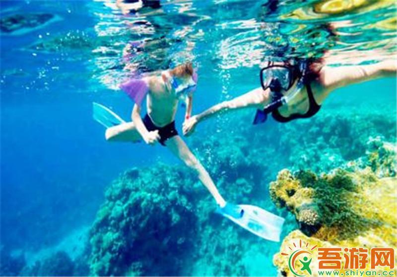 初见美娜多—世界第一潜水胜地6D4N