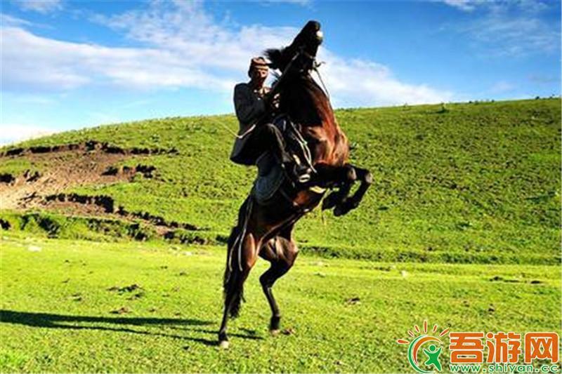 南北疆特色品质8日游